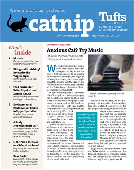 Catnip Cover - 2/1/2019