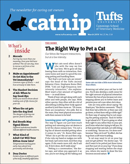 Catnip Cover - 3/1/2019