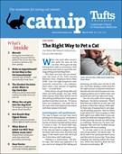 Catnip Newsletter 3/1/2019