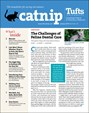 Catnip Newsletter | 1/2019 Cover
