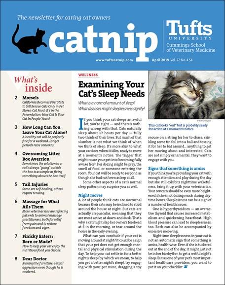Catnip Cover - 4/1/2019