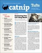 Catnip Newsletter 4/1/2019