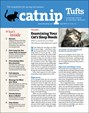 Catnip Newsletter | 4/2019 Cover
