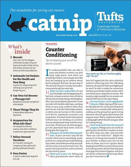 Catnip Cover - 7/1/2019