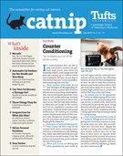 Catnip Newsletter 7/1/2019