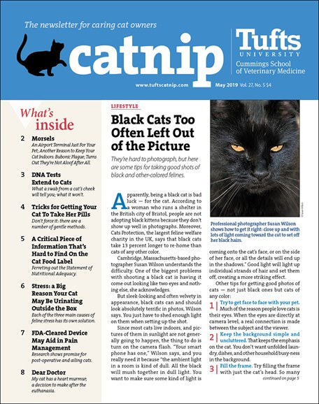 Catnip Cover - 5/1/2019