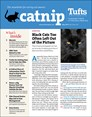 Catnip Newsletter | 5/2019 Cover