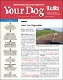 Your Dog | 1/2019 Cover