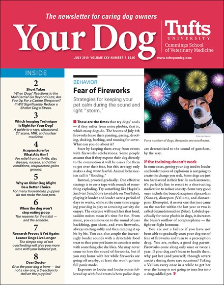 Your Dog Cover - 7/1/2019