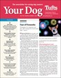 Your Dog | 7/2019 Cover