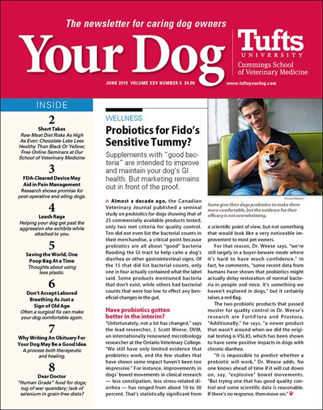 Your Dog Cover - 6/1/2019
