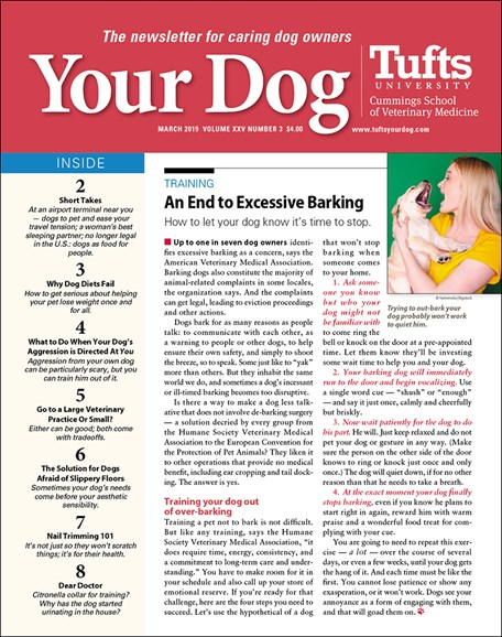 Your Dog Cover - 3/1/2019