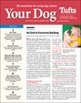 Your Dog | 3/2019 Cover