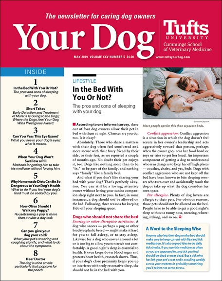 Your Dog Cover - 5/1/2019