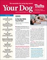 Your Dog | 5/2019 Cover
