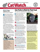Catwatch Magazine 4/1/2019