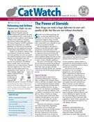 Catwatch Magazine 12/1/2018