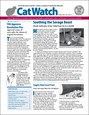 Catwatch Magazine | 2/2019 Cover