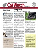 Catwatch Magazine 7/1/2019