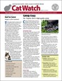 Catwatch Magazine | 7/2019 Cover