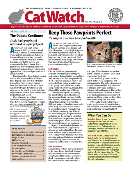 Catwatch Cover - 6/1/2019