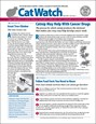 Catwatch Magazine | 3/2019 Cover