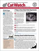 Catwatch Magazine 5/1/2019