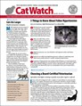 Catwatch Magazine | 5/2019 Cover