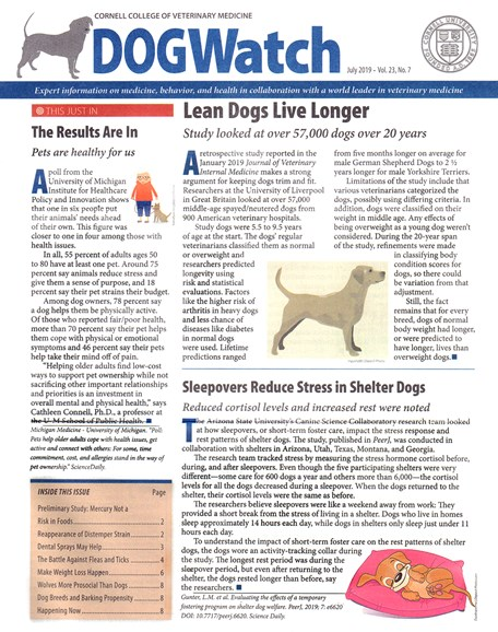 Dogwatch Cover - 7/1/2019
