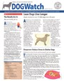 Dogwatch Newsletter | 7/2019 Cover