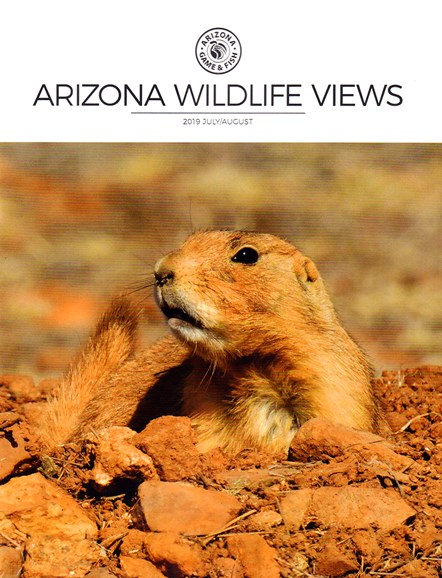 Arizona Wildlife Views Cover - 7/1/2019
