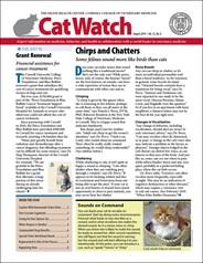 Catwatch