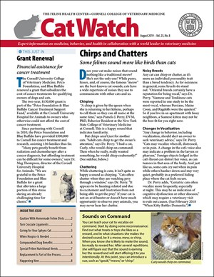 Catwatch Magazine | 8/2019 Cover