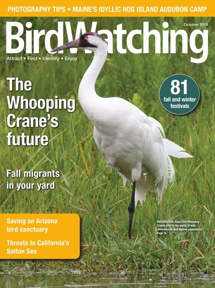 Bird Watching Cover - 9/1/2019