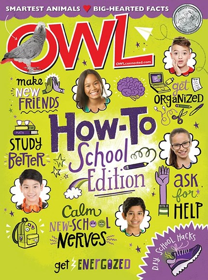 OWL Cover - 9/1/2019