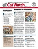 Catwatch Magazine 9/1/2019