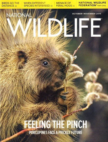 National Wildlife Cover - 10/1/2019