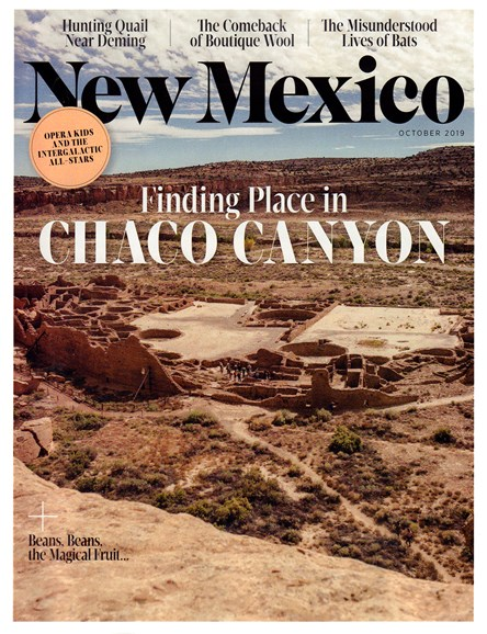 New Mexico Cover - 10/1/2019