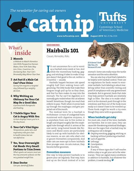 Catnip Cover - 8/1/2019