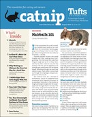 Catnip Newsletter 8/1/2019