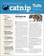 Catnip Newsletter | 8/2019 Cover