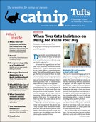 Catnip Newsletter 10/1/2019