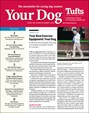 Your Dog | 8/2019 Cover
