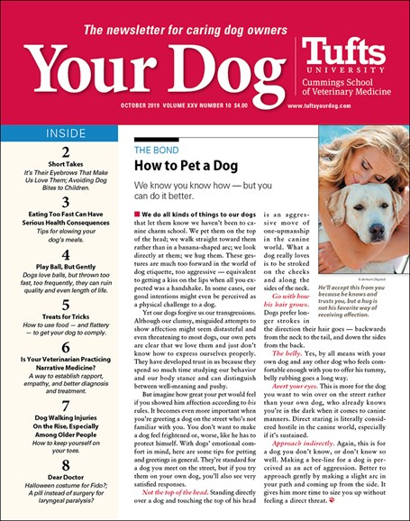 Your Dog Cover - 10/1/2019