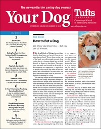 Your Dog | 10/2019 Cover