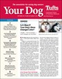 Your Dog | 9/2019 Cover