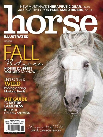 Horse Illustrated Cover - 10/1/2019