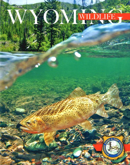 Wyoming Wildlife Cover - 10/1/2019