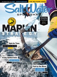 Salt Water Sportsman Magazine   11/2019 Cover