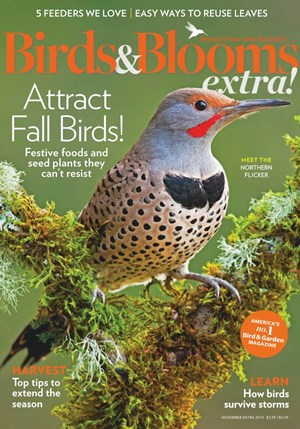 Birds And Blooms Extra | 11/2019 Cover